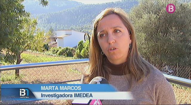 El+nivell+del+mar+Mediterrani+ja+ha+pujat+devers+un+pam