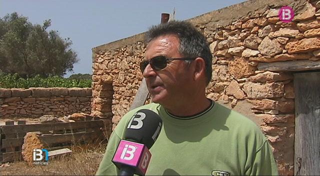 El+Consell+de+Formentera+adquireix+m%C3%A9s+de+37.000+quilos+de+pinso+per+als+animals+per+mor+de+la+sequera