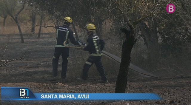 Incendi+a+una+zona+agr%C3%ADcola+de+Santa+Maria