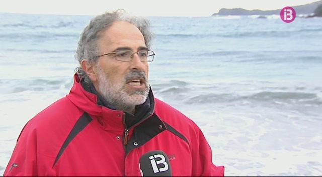 Promouen+a+Menorca+un+centre+de+recuperaci%C3%B3+de+tortugues+marines