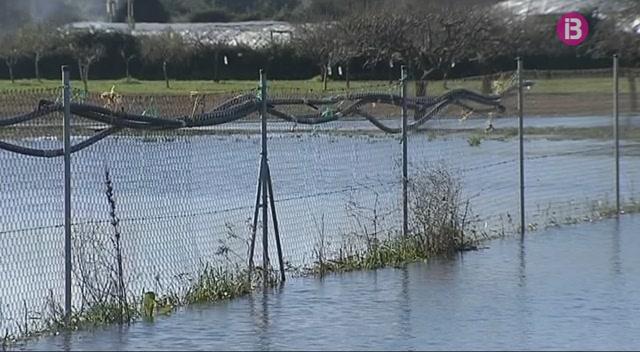 Els+afectats+per+les+inundacions+a+Porreres+comencen+a+avaluar+danys
