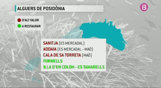 L%27esborrany+del+decret+que+protegir%C3%A0+la+posid%C3%B2nia+prohibeix+fondejar+a+Talamanca+i+Porroig