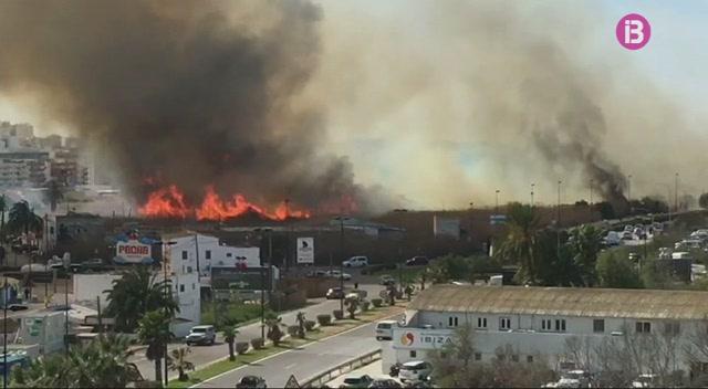Eivissa+contempla+l%27expropiaci%C3%B3+dels+terrenys+cremats+de+ses+Feixes+per+aplicar+un+pla+de+protecci%C3%B3