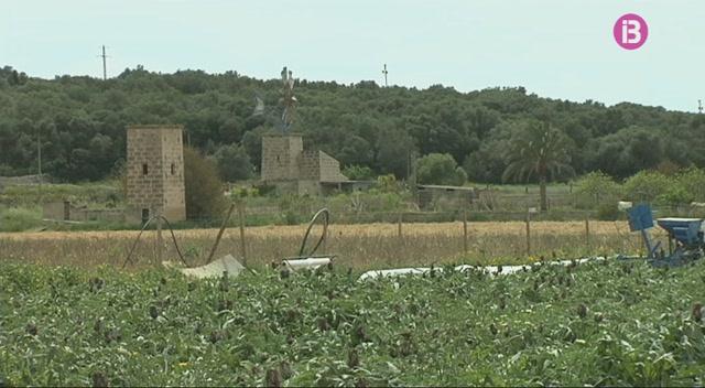 El+Consell+de+Mallorca+presenta+el+Pla+Insular+de+Gesti%C3%B3+de+Patrimoni+per+als+pr%C3%B2xims+dos+anys