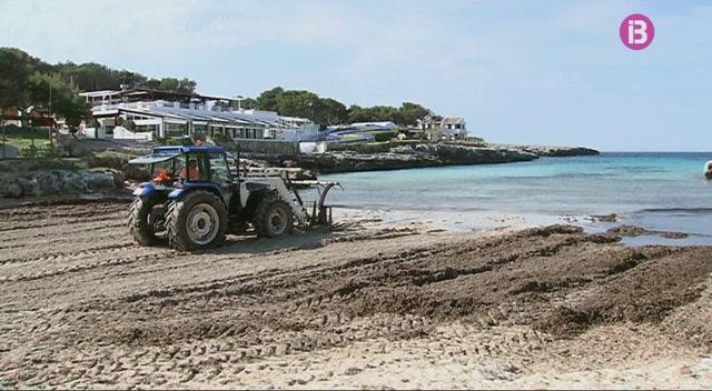 Manca+arena+a+la+platja+de+Cala+Blanca%2C+a+Ciutadella