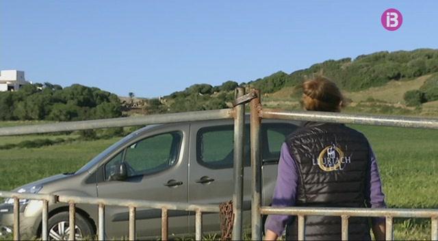 Els+araders+de+Menorca+fan+barreres+d%27ullastre+per+al+turisme
