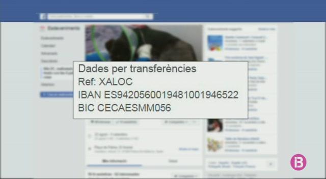 Demanen+col.laboraci%C3%B3+per+pagar+el+tractament+veterinari+d%27en+Xaloc
