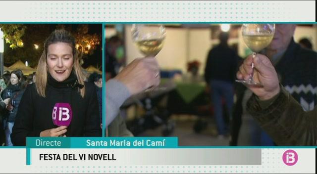 15a+edici%C3%B3+de+la+Festa+del+Vi+Novel+de+Santa+Maria