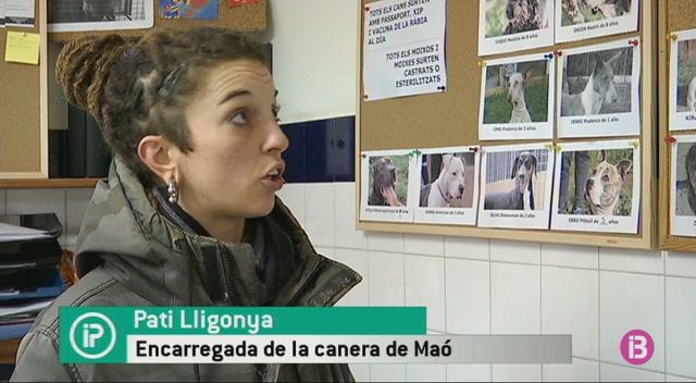 Les+caneres+de+Menorca+estrenen+p%C3%A0gina+web