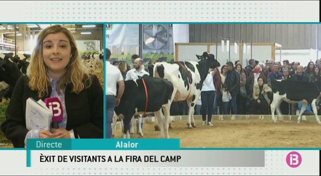 Una+vaca+de+Binisegu%C3%AD+Vell+guanya+el+premi+Gran+Campiona+de+la+Fira+del+Camp