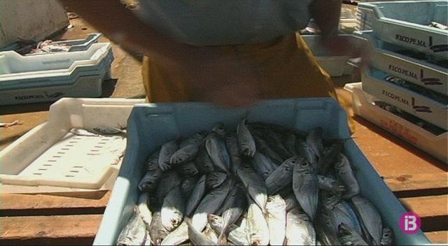 La+prohibici%C3%B3+de+la+pesca+de+palangre+a+menys+de+12+milles+de+Menorca+divideix+al+Govern+i+els+pescadors