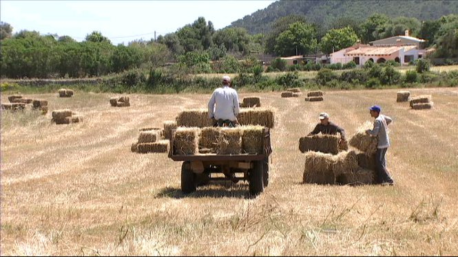 Modificacions+del+Programa+de+Desenvolupament+Rural+per+al+per%C3%ADode+del+2014+al+2020