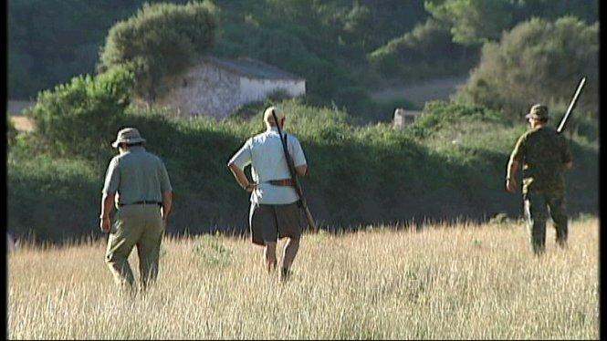 El+Consell+de+Menorca+disposa+per+primera+vegada+d%27un+cens+fiable+sobre+les+poblacions+de+conills
