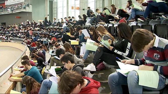 M%C3%A9s+de+13.000+alumnes+de+les+Illes+participen+en+les+proves+Cangur