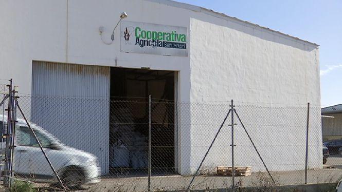 Les+cooperatives+i+els+escorxadors+de+les+Piti%C3%BCses%2C+amb+les+energies+renovables
