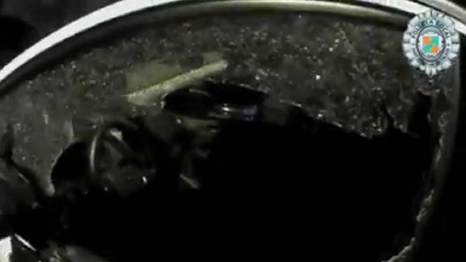 La+Policia+Local+de+Sant+Josep+rescata+un+boix+atrapat+dins+un+cotxe