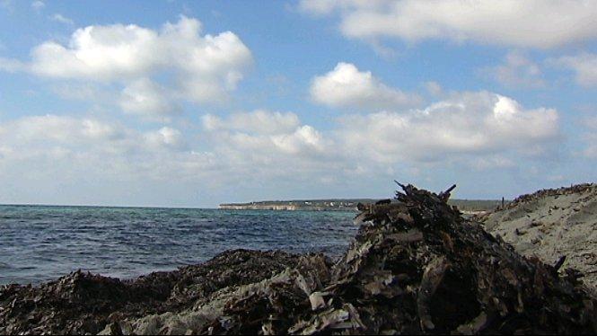 Un+ve%C3%AFnat+troba+tres+sacs+plens+de+coca%C3%AFna+a+la+platja+de+Migjorn+de+Formentera