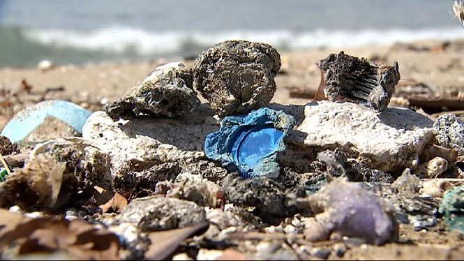 Veinats+de+Palma+denuncien+la+pres%C3%A8ncia+cont%C3%ADnua+d%27esc%C3%B2ria+a+les+platges