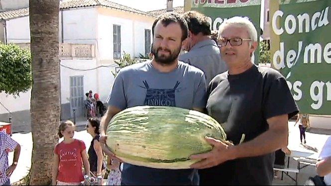 Se+celebra+a+Vilafranca+la+Fira+del+Mel%C3%B3