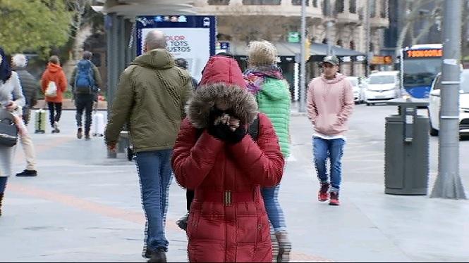 Onzena+nevada+aquest+mes+de+febrer+a+la+Serra+de+Tramuntana