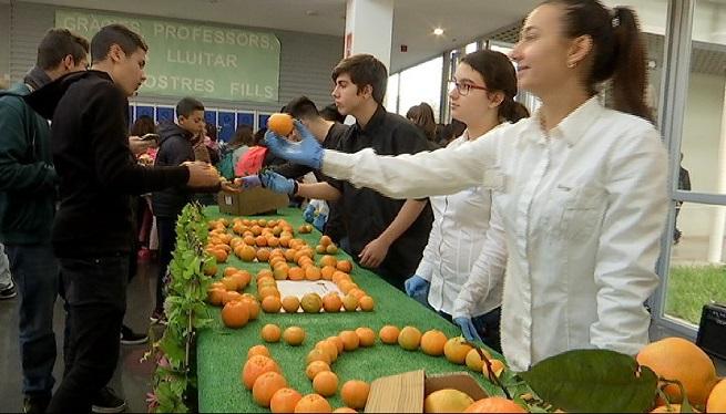 230+escoles+de+les+Illes+participen+en+un+programa+de+foment+del+consum+de+fruites+i+hortalisses