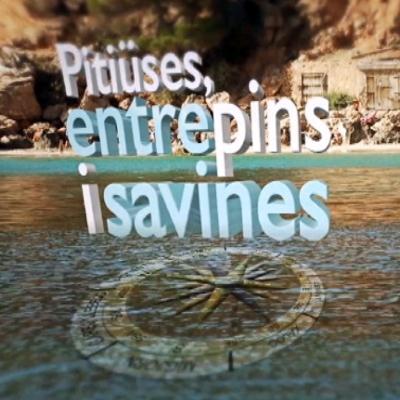 PITIÜSES, ENTRE PINS I SAVINES