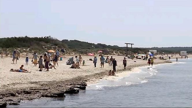 La+platja+d%27Es+Trenc+rep+centenars+de+banyistes+en+ple+mes+d%27Abril