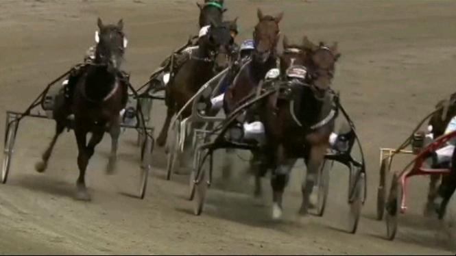 Un+cavall+espanyol+participa+per+primera+vegada+a+l%E2%80%99Oslo+Grand+Prix