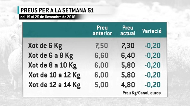 El+preu+del+xot+a+la+llotja+de+Palma+cau+20+c%C3%A8ntims+en+plena+setmana+de+Nadal