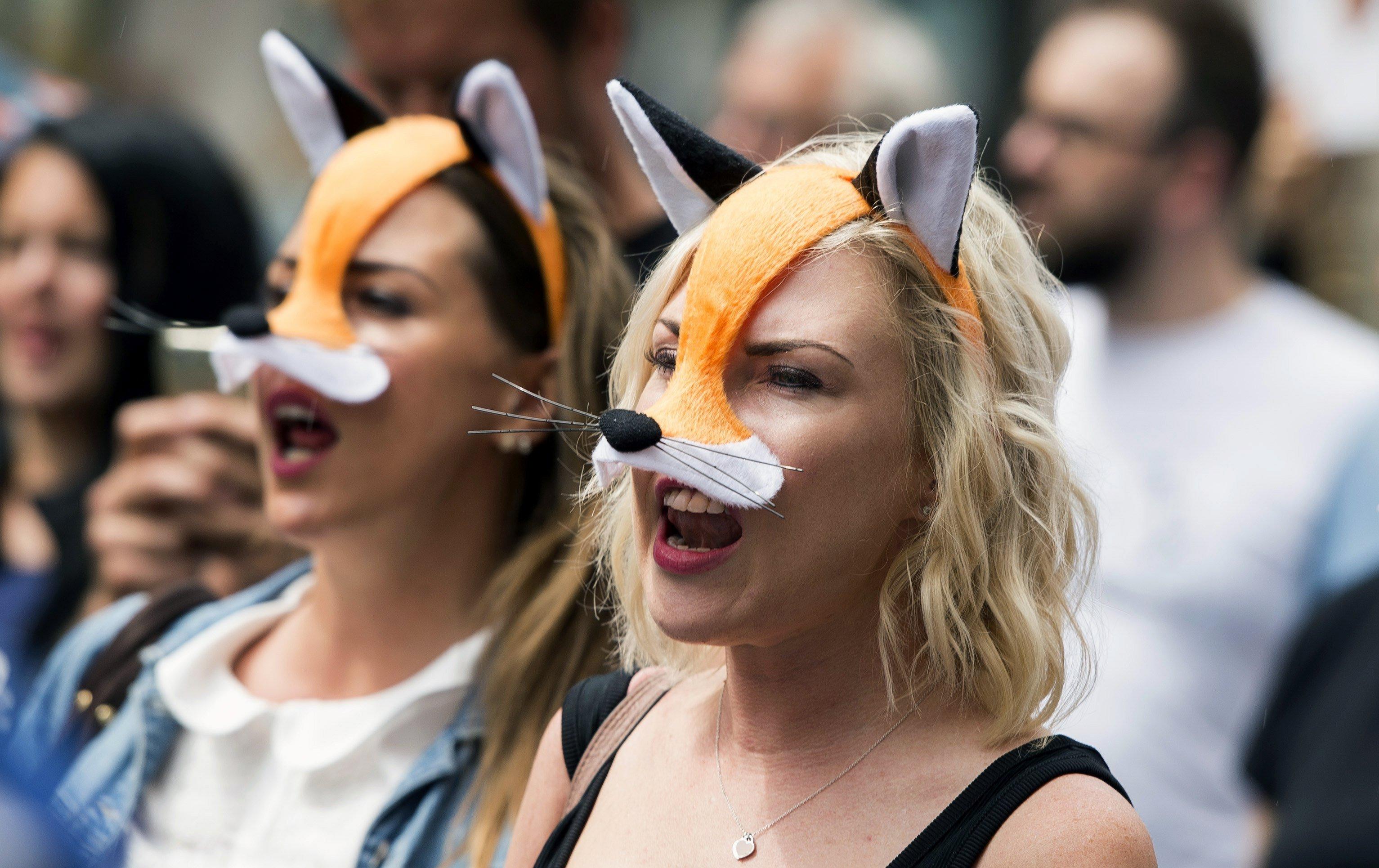Centenars de persones es manifesten a Londres contra la possible reinstauració de la caça de la guineu amb cans (Regne Unit). /WILL OLIVER