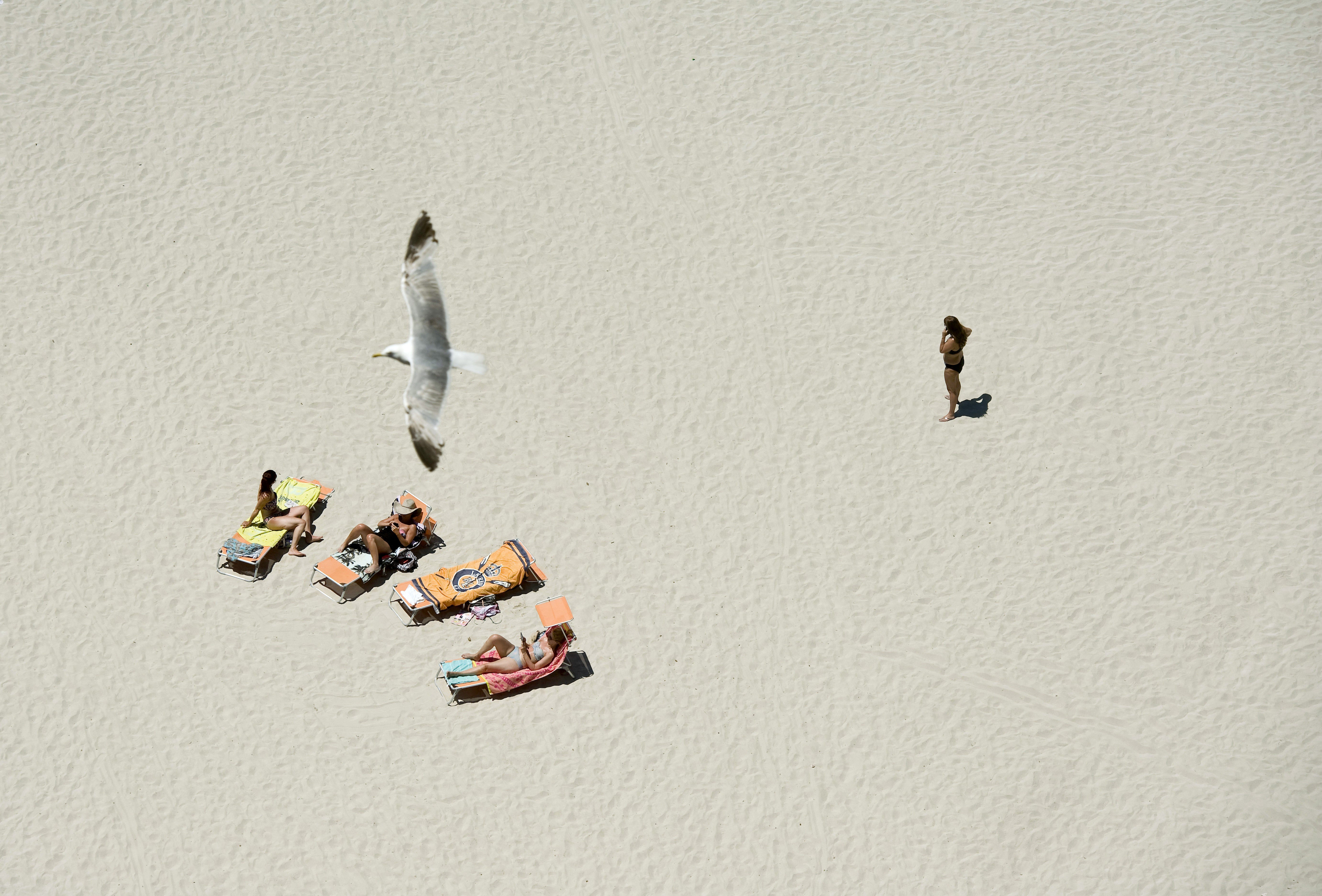 Una gavina vola sobre diverses persones que prenen el sol a la platja de Cala en Porter (Alaior), al sud de Menorca. /DAVID ARQUIMBAU