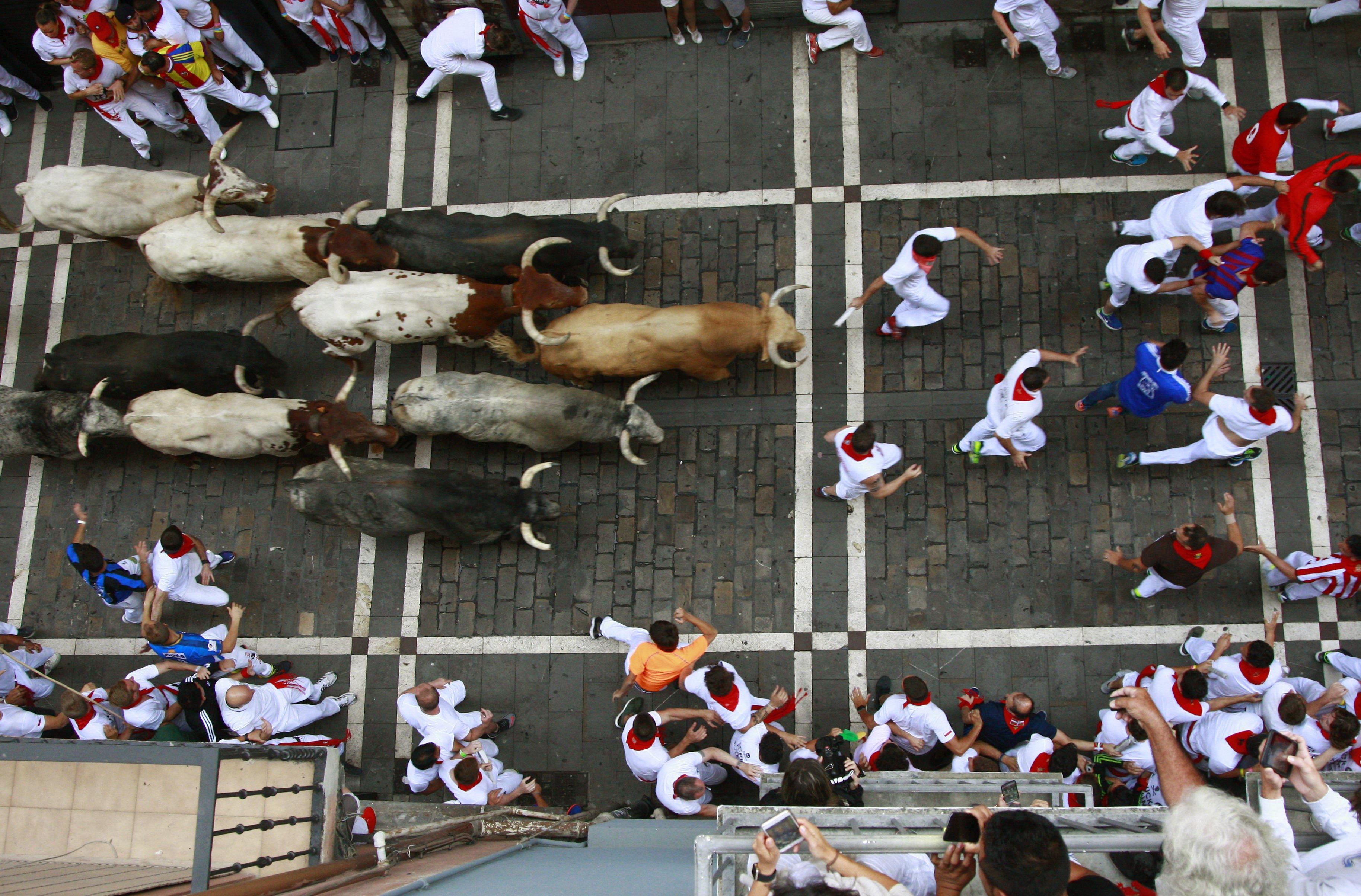 Els toros de la ramaderia gaditana Cebada Gago enfilan el carrer de l'Estafeta durant el primer tancament dels 'sanfermines'. /JOSU SANTESTEBAN