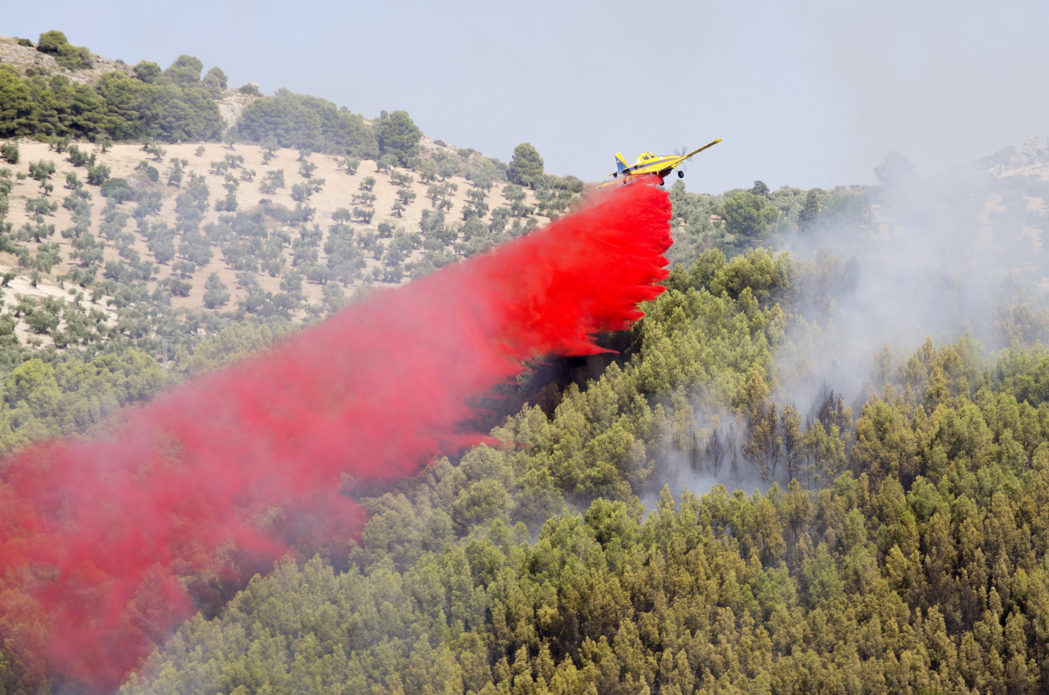 Imatge de l'incendi forestal declarat a una zona de pinar de Jaén. /CARLOS CID GAITAN