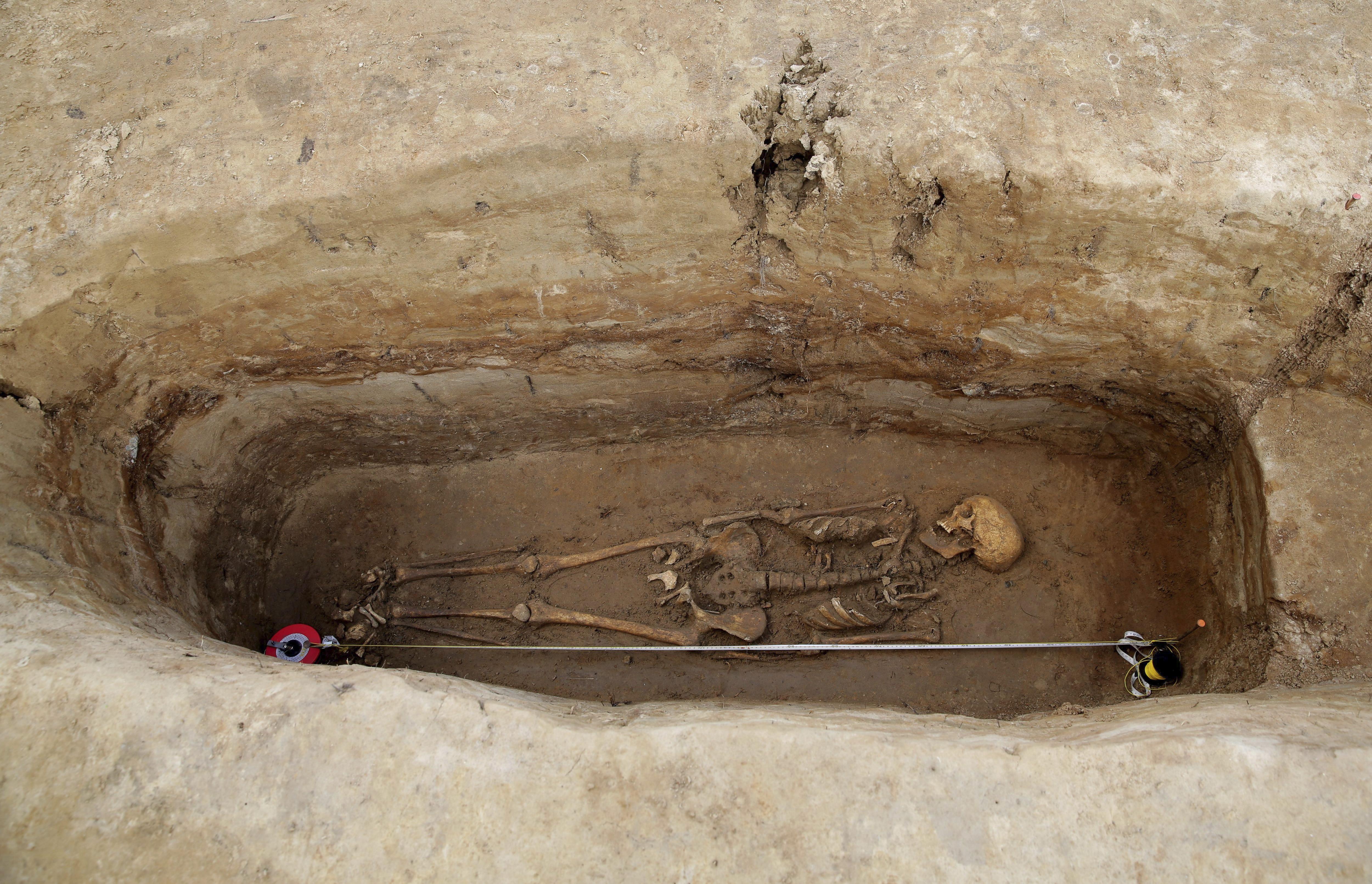 Vista d'un esquelet excavat durant una recerca arqueològica medieval, prop de Barczewo, Polònia, on els arqueòlegs han descobert restes de la primera localització medieval, anomenada 'Warmia Pompeii'./Tomasz Waszczuk