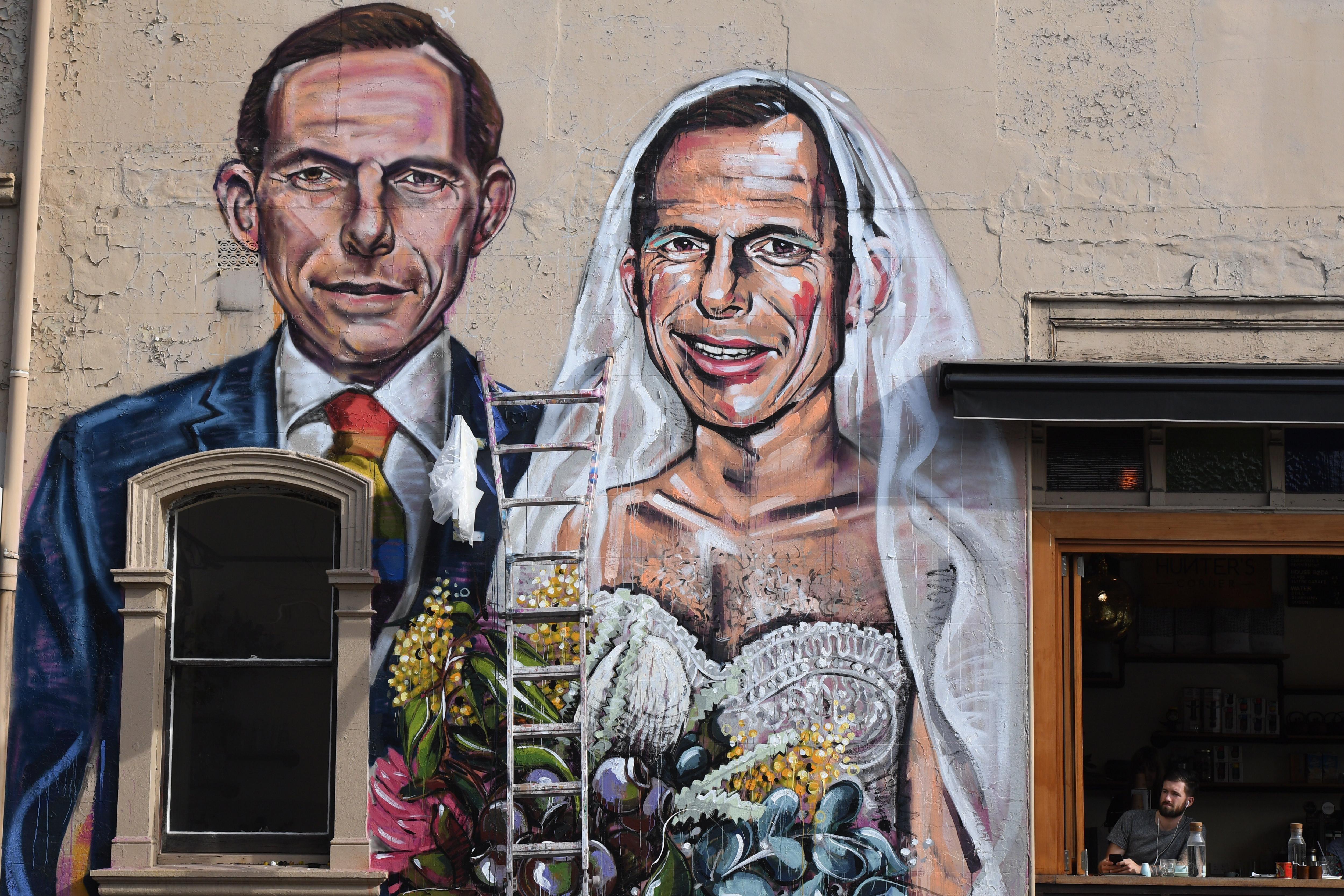 Mural on apareix el primer ministre australià, Tony Abbott, casant-se amb si mateix, a Sydney (Austràlia). El mural és obra de l'artista Scott Marsh. /DEAN LEWINS