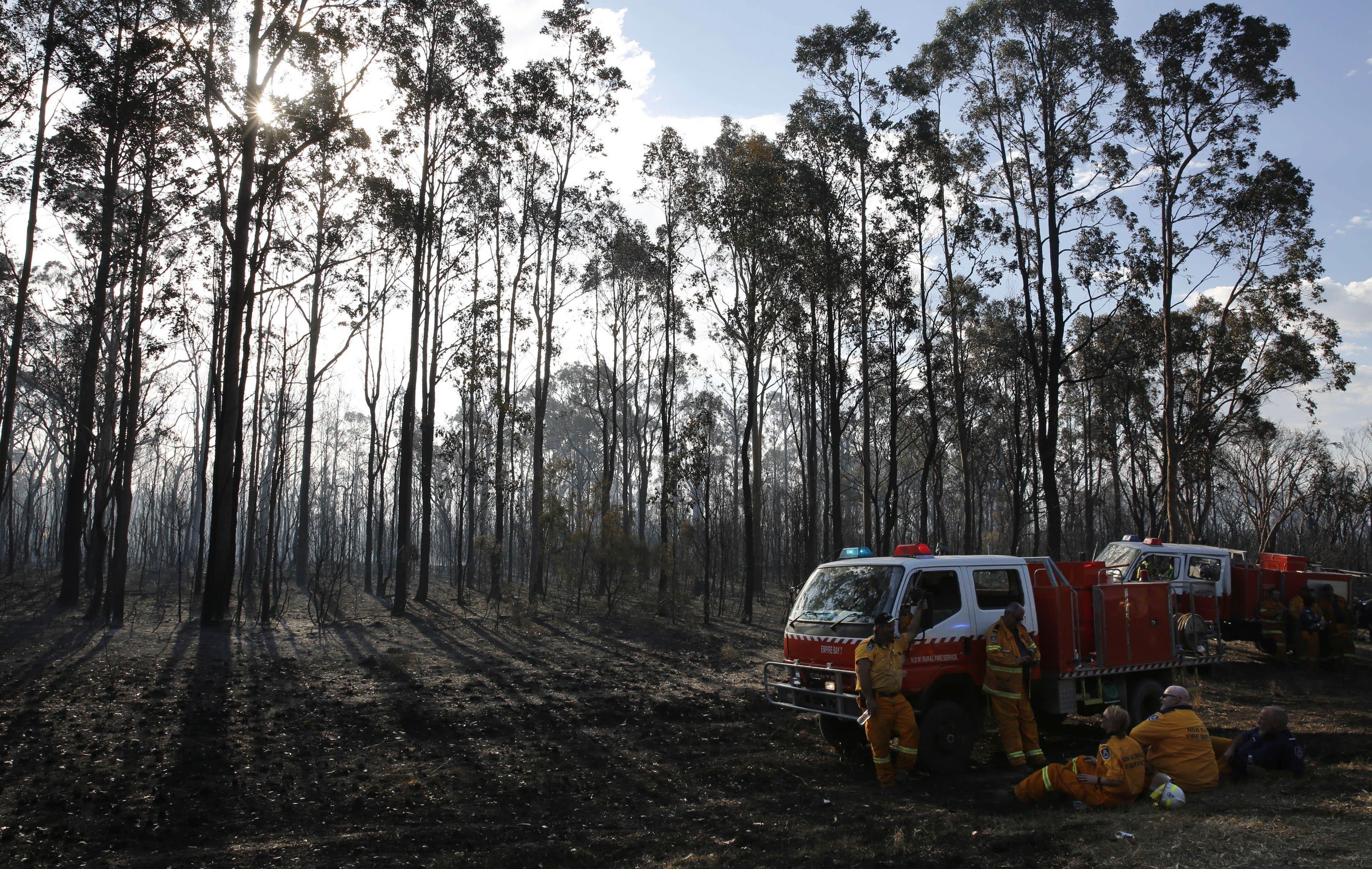 Bombers es prenen un descans després que s'originés un incendi forestal a Austràlia./DARREN PATEMAN