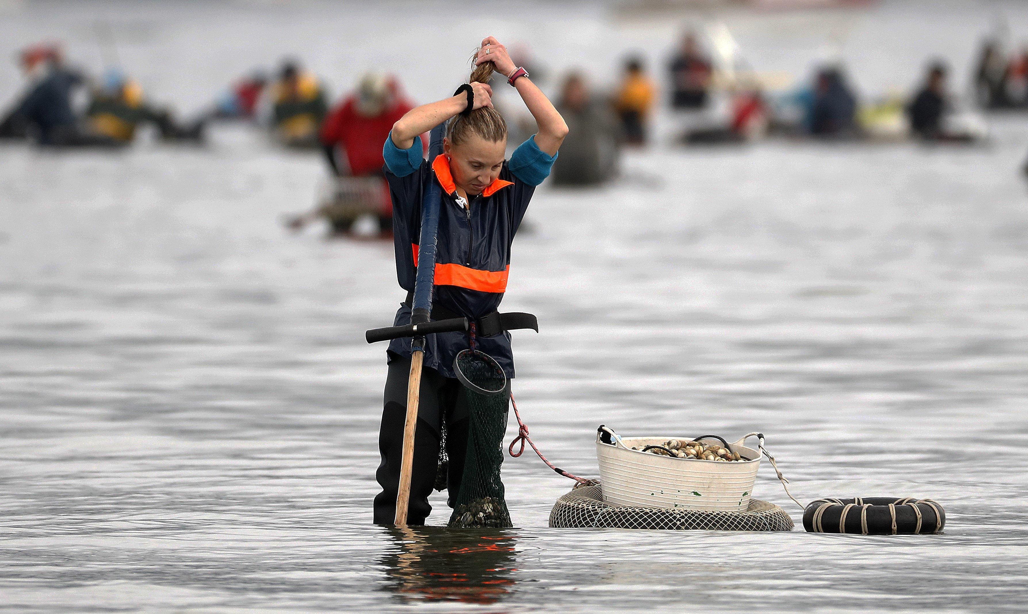 Uns 1500 mariscadors, uns a peu i uns altres amb vaixell, enceten la campanya a Noia. /LAVANDEIRA JR