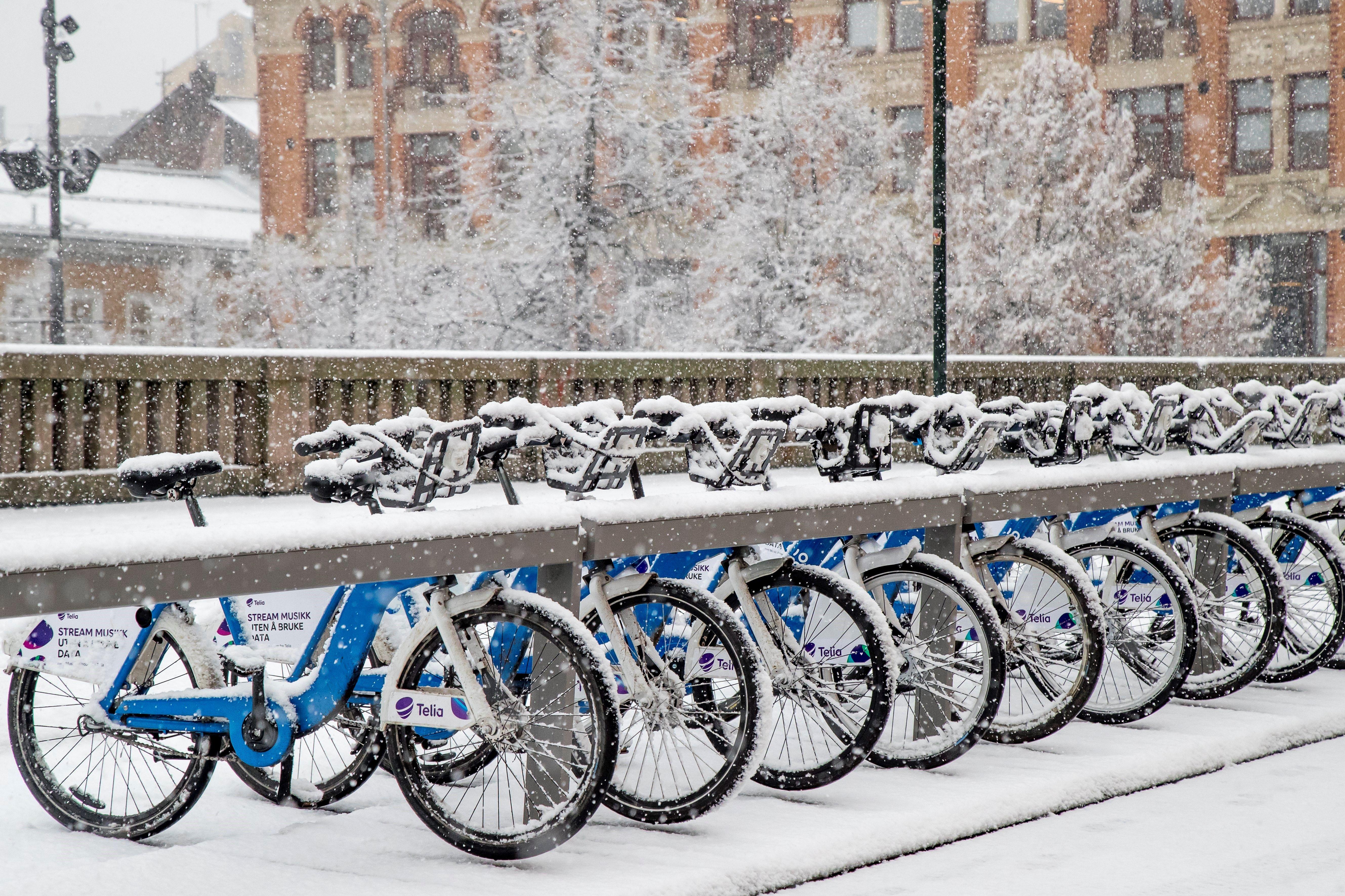 Diverses bicicletes cobertes de neu aparcades durant la primera nevada de l'hivern a Oslo (Noruega). /HEIKO JUNGE
