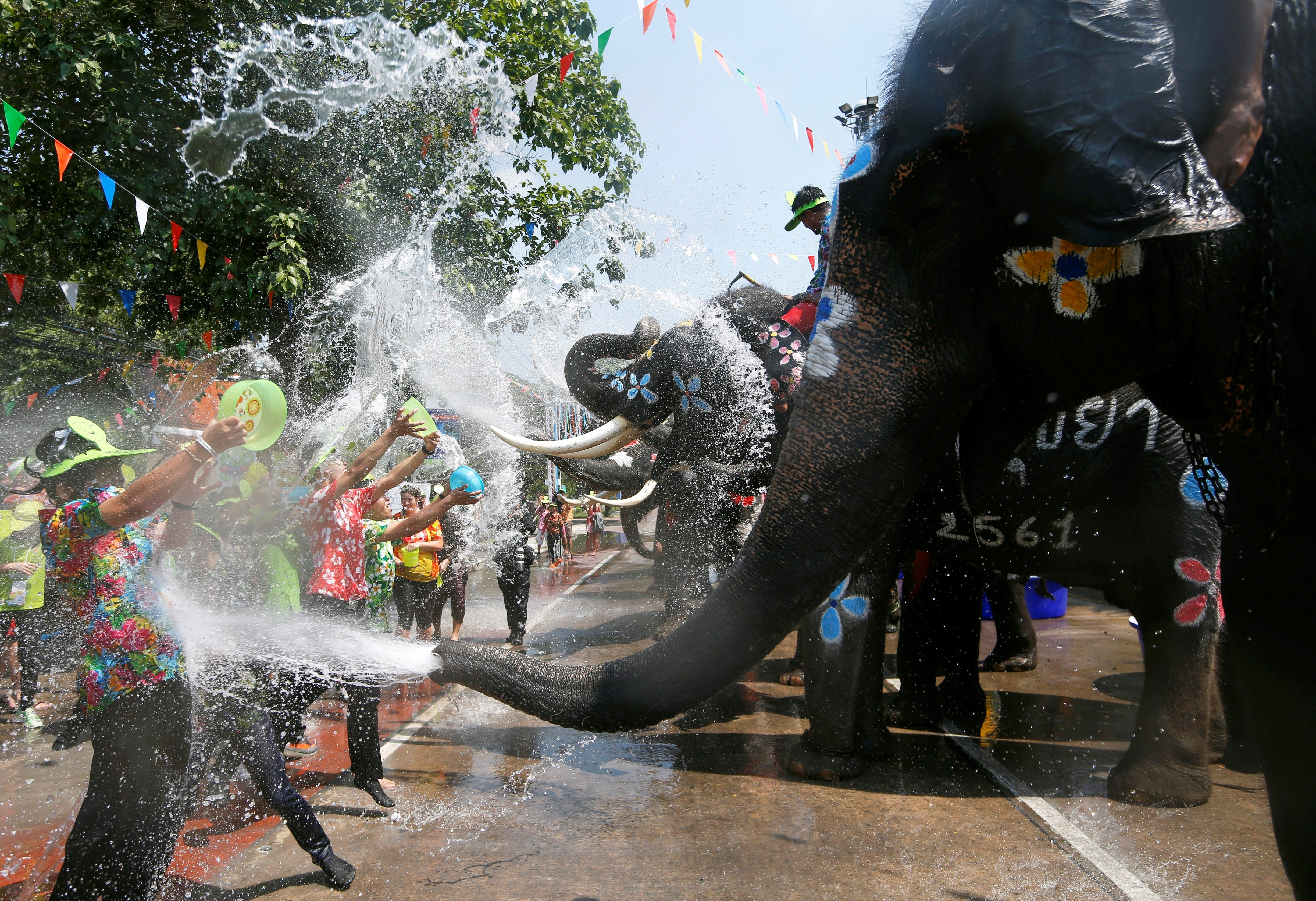 Elefants i persones es llancen aigua durant les celebracions del Festival Songkran a Ayutthaya (Tailàndia) per commemorar l'Any Nou tailandès. /RUNGROJ YONGRIT