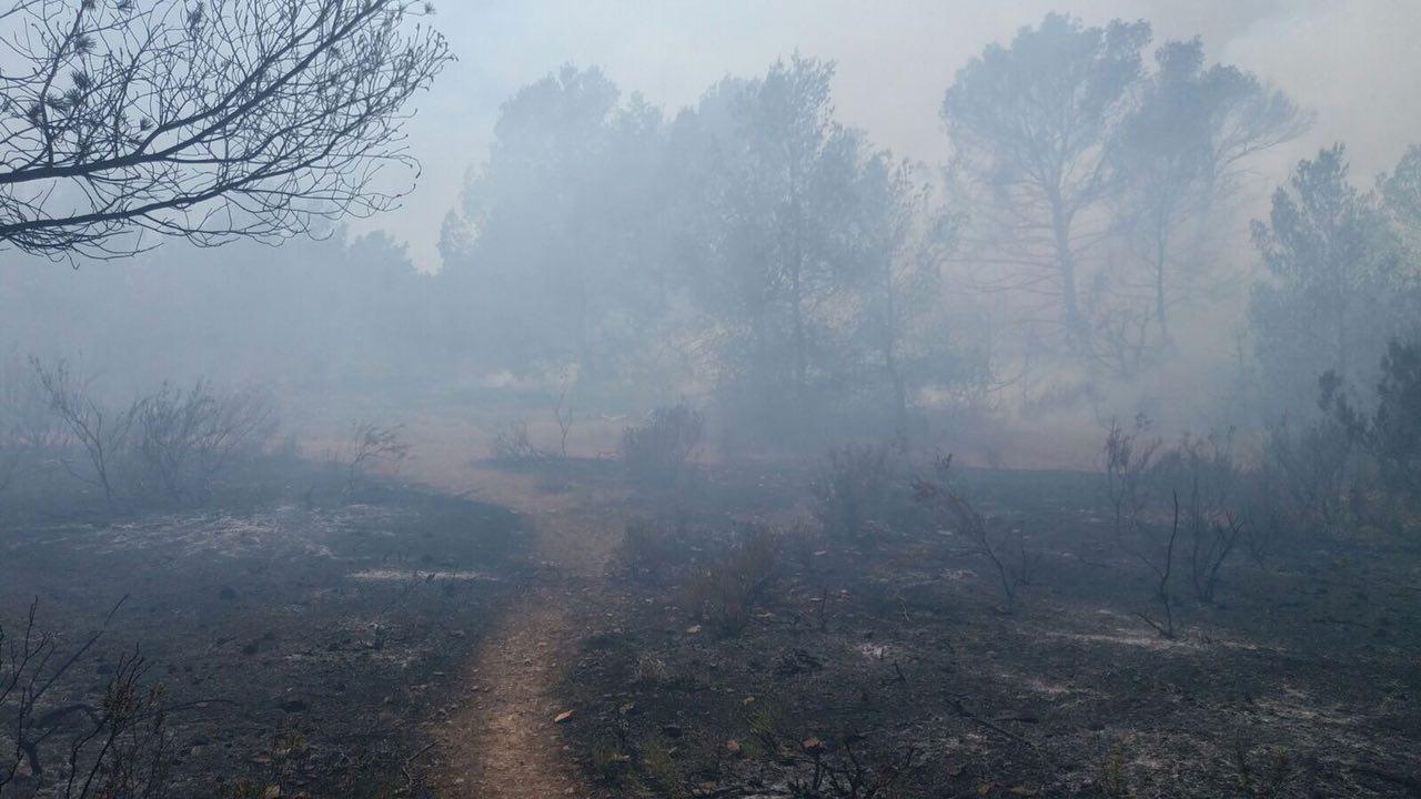 Incendi forestal a Cala Saona
