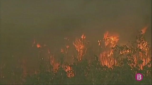 Declarat+l%27estat+de+desastre+a+Austr%C3%A0lia+pels+incendis