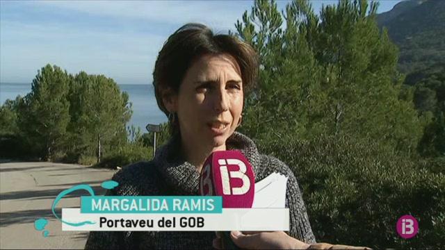 El+GOB+demana+la+desclassificaci%C3%B3+la+urbanitzaci%C3%B3+Pinares+de+Bonaire+a+Alc%C3%BAdia