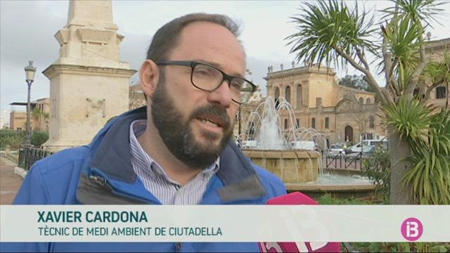El+Consell+far%C3%A0+net+les+platges+de+Menorca+sense+tocar+la+posid%C3%B2nia