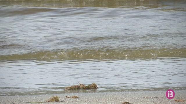 Les+platges+de+Menorca+han+perdut+5+metres+lineals+d%27arena+en+els+darrers+60+anys