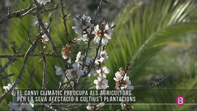 Agricultors+adapten+els+seus+cultius+al+canvi+clim%C3%A0tic