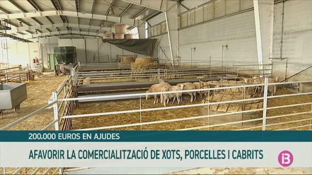 La+conselleria+d%27Agricultura+destina+200.000+euros+per+ajudar+a+la+comercialitzaci%C3%B3+dels+productes+frescos+del+sector+ramader+a+totes+les+Illes