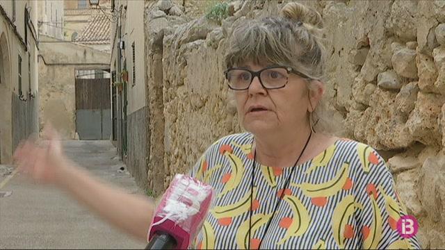 Les+serps+invasores+continuen+proliferant+al+Pla+de+Mallorca