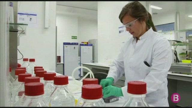 Prometedors+resultats+de+la+vacuna+contra+el+coronavirus+que+desenvolupa+la+universitat+brit%C3%A0nica+d%27Oxford