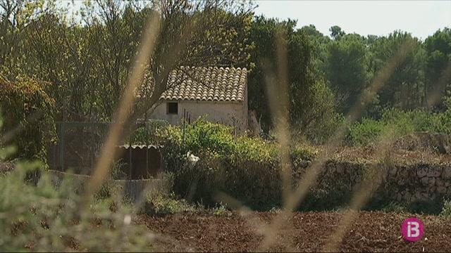 Algaida+%C3%A9s+el+municipi+de+Mallorca+amb+m%C3%A9s+demolicions+en+s%C3%B2l+r%C3%BAstic