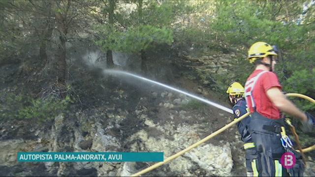 Un+incendi+ha+calcinat+mil+metres+quadrats+de+pinar+a+Bendinat